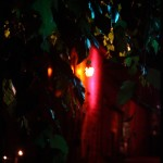 01-Grimoires en lumières